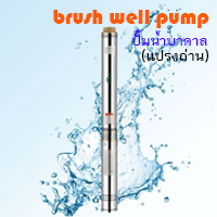 solar brush well pump